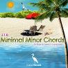 Minimal Minor Chords