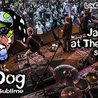 """Lou Dog """"A Tribute to Sublime"""" at The Outland"""