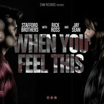 Stafford Brothers feat. Jay Sean & Rick Ross – When You Feel This (Original Mix)