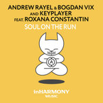 """Andrew Rayel Produces Goosebumps in Most Recent Release """"Soul On The Run"""""""